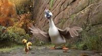 duck-duck-goose-25